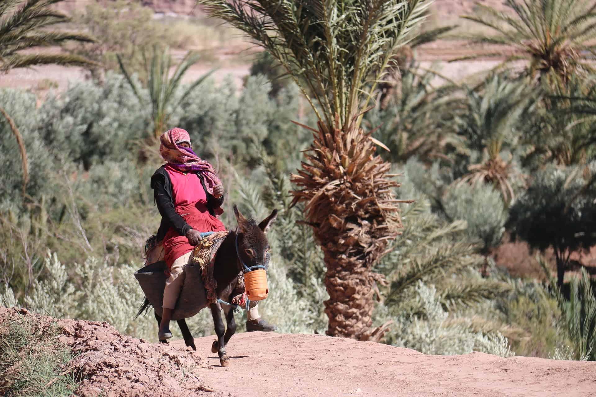 Top Things to Do in Agadir beyond the Beach