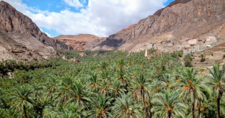 Comment choisir vos excursions depuis Agadir