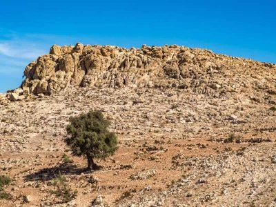 limestone-cliffs-agadir